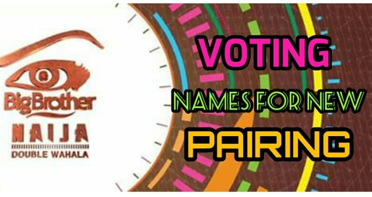 Voting Names Of New Pairs In Big Brother Naija House For Week Four