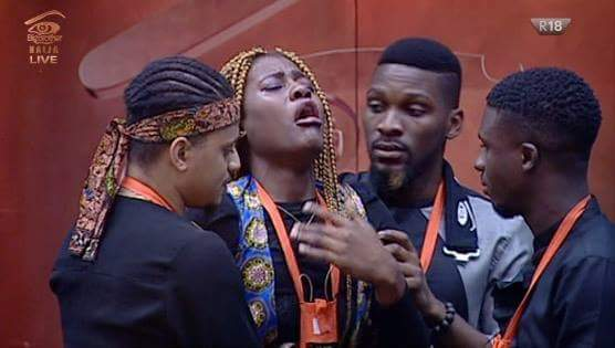 Viewers Voted For Fake Housemates And Evicted The Real Ones, BBNaija Housemates Revealed
