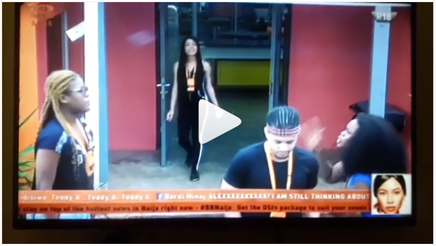 Watch Cee-C and Alex Fight In Big Brother House