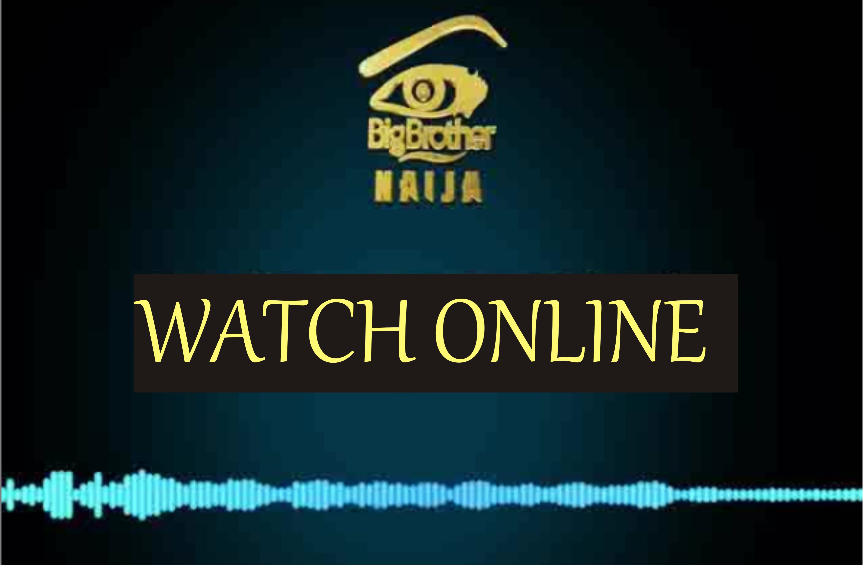 How to Watch Big Brother Nigeria 2019 Online for Free