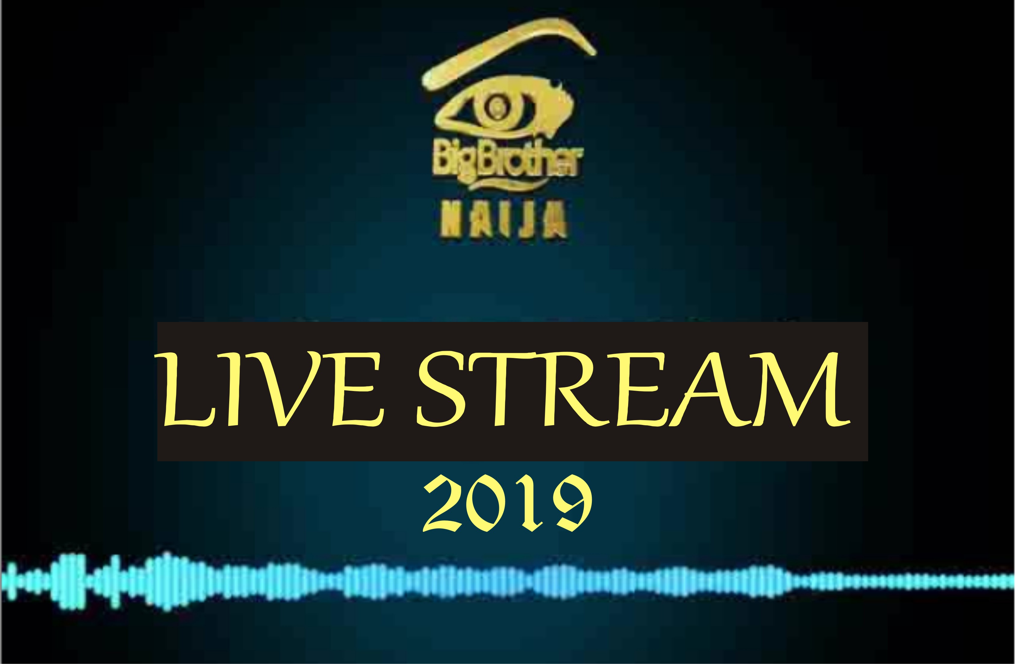 How to Watch BBNaija 2019 in United Kingdom, United States, China, France, Canada, etc.